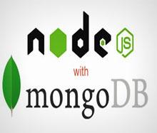 Node.Js & Mongodb